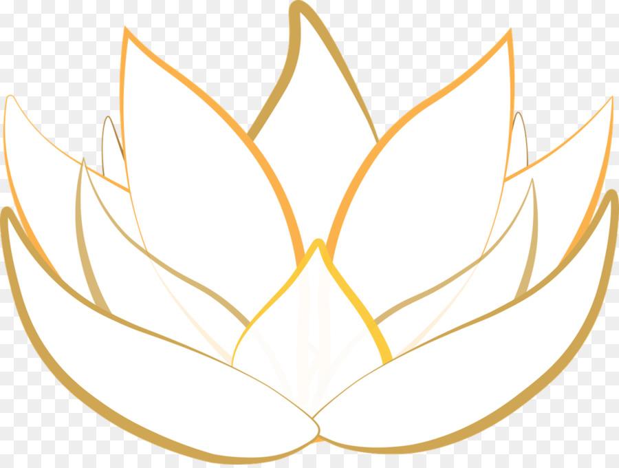 Nelumbo Kelapa Sawit Mesir Lotus Menggambar Nymphaea Lotus Lain Lain
