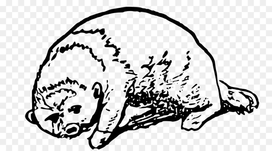 Gato nutria de Mar del Perro Clip art - Gato png dibujo ...