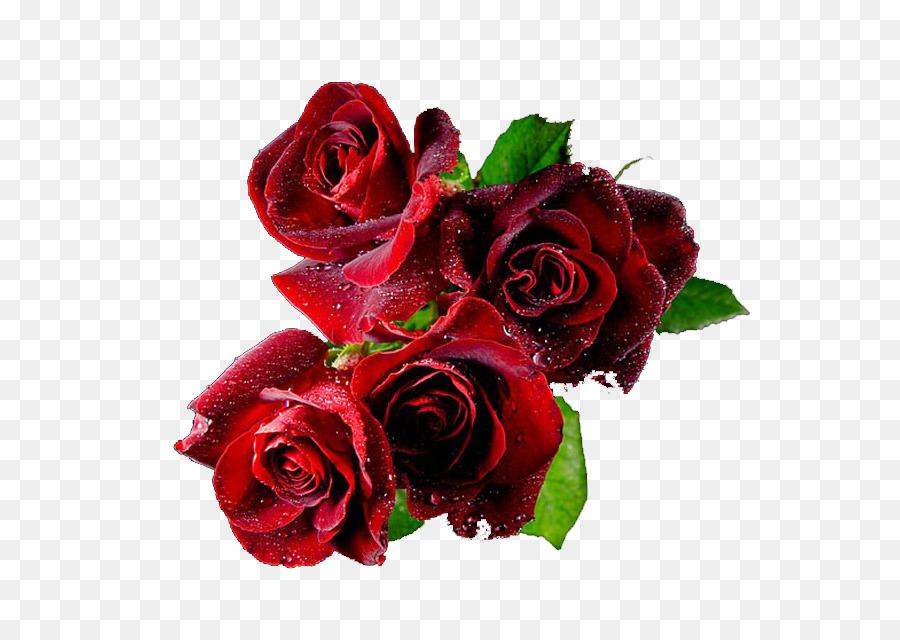 Valentines Day Desktop Wallpaper Animation Valentines