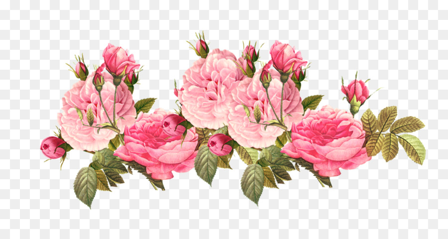 Flower Pink Png Download 915 480 Free Transparent