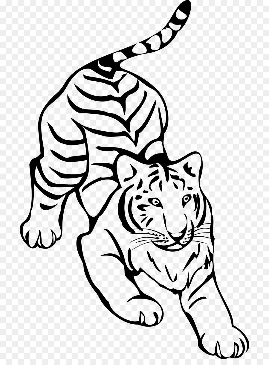 Les Moustaches De Tigre Ligne D Art En Noir Et Blanc Dessin Tigre