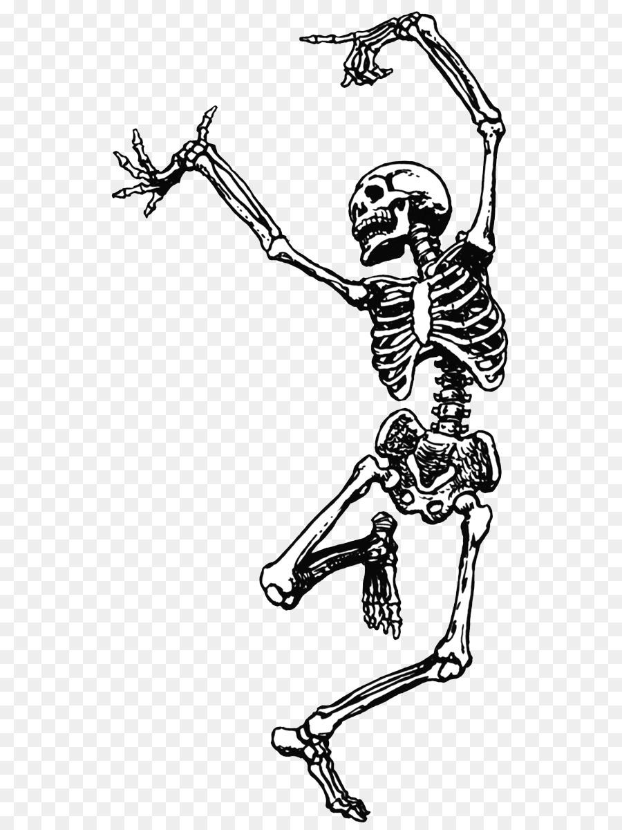 Skelett-Tanz-clipart - Skelett png herunterladen - 631*1200 ...