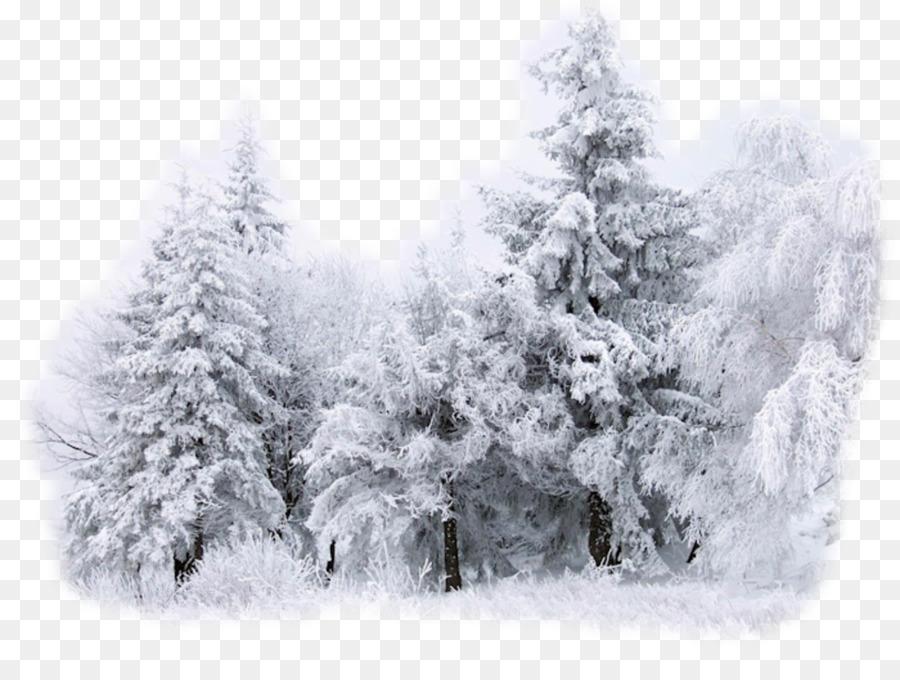 Sfondo Del Desktop Neve Invernale Disegno Neve Scaricare Png