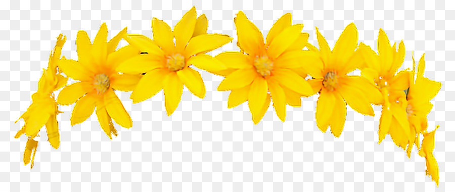 Wreath crown yellow flower crown png download 1000422 free wreath crown yellow flower crown mightylinksfo