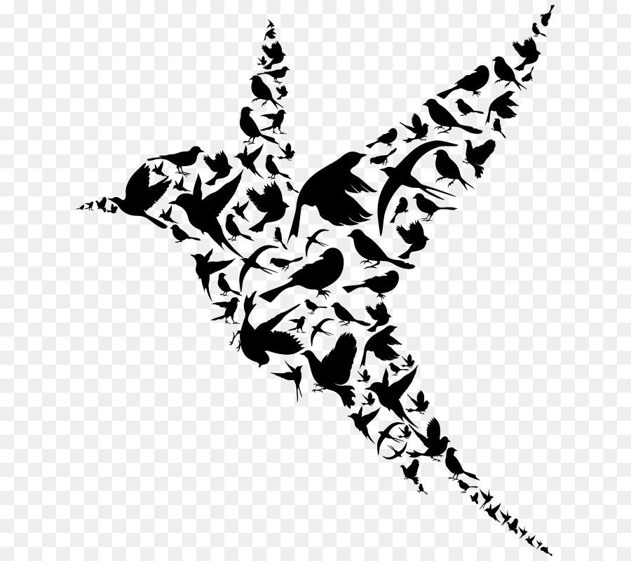 Bird Wall Decal Flight Swallow Bird Png Download 800800 Free