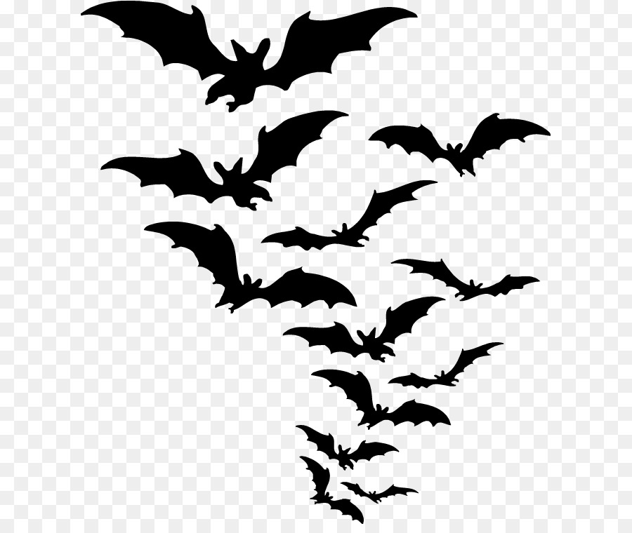 bat clip art bat png download 669 747 free transparent bat png
