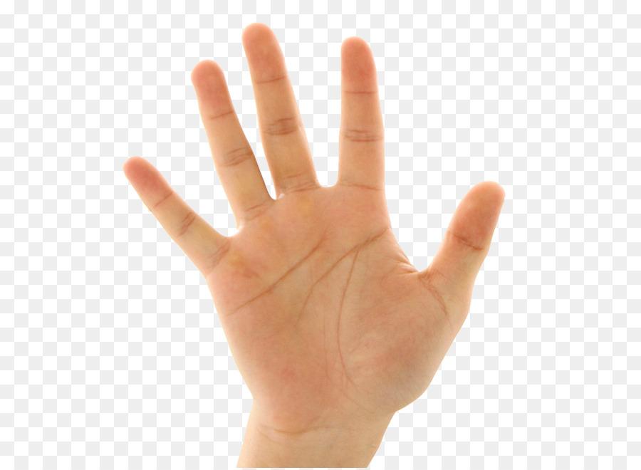 Tangan Ekstremitas Atas Palmistry Gerakan Henna Tangan Unduh