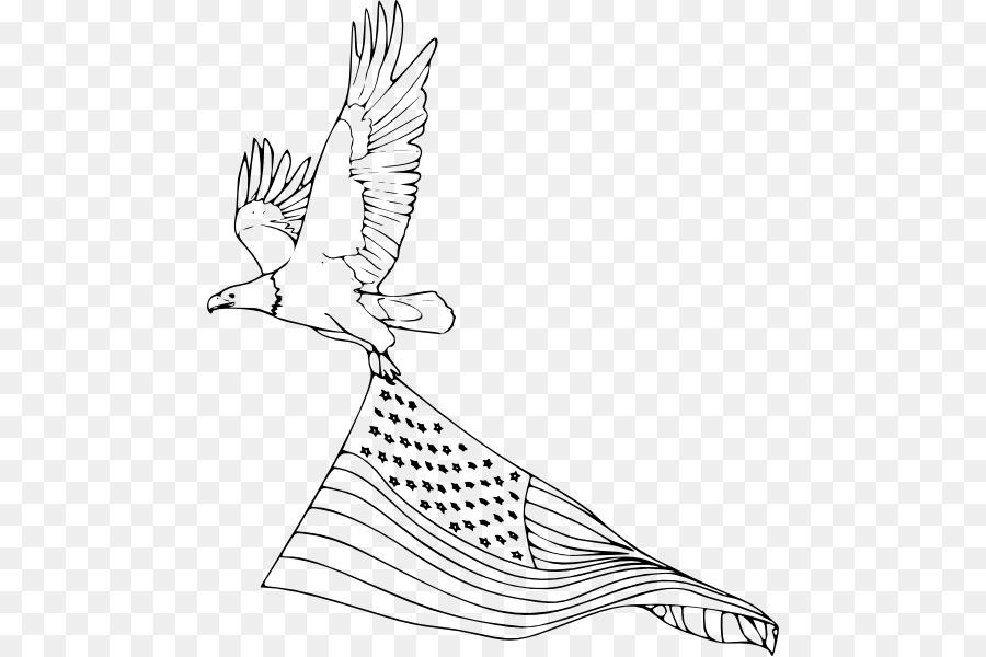 Águila calva de Aves libro para Colorear, Dibujo de - Aves png ...