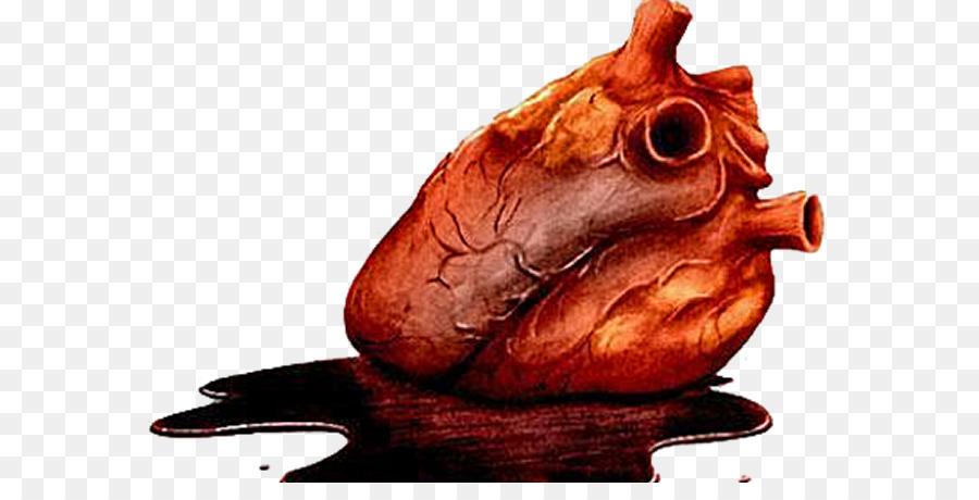 Cómo Funciona Su Corazón Anatomía The Tell-Tale Heart Clip art ...