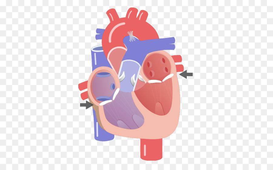 Corazón de la válvula del sistema de conducción Eléctrica del ...