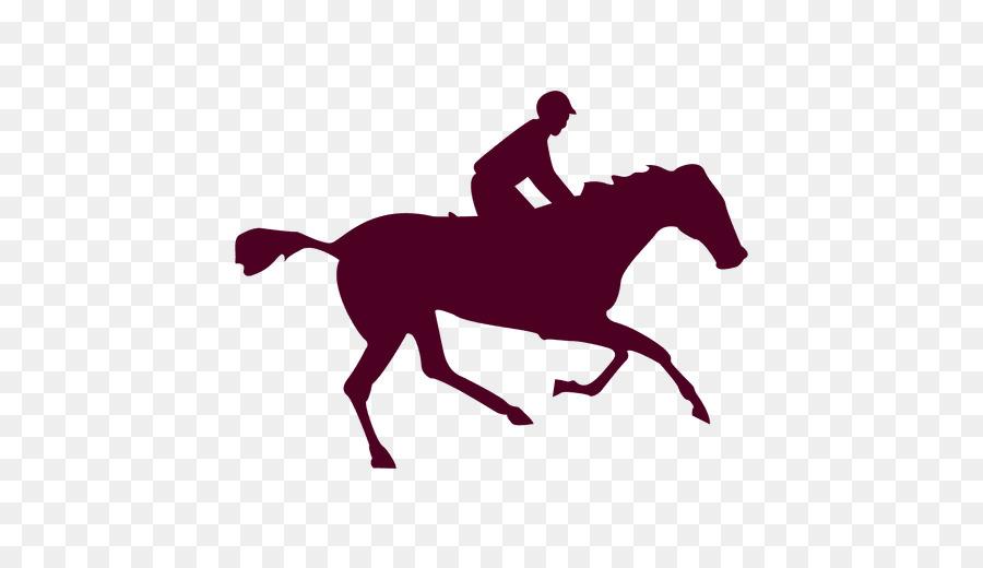 Kuda Dalam Animasi Gerak Fotografi Fotografer Kuda Unduh Inggris