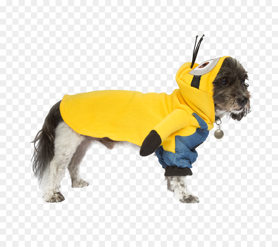 minions kostume til hund