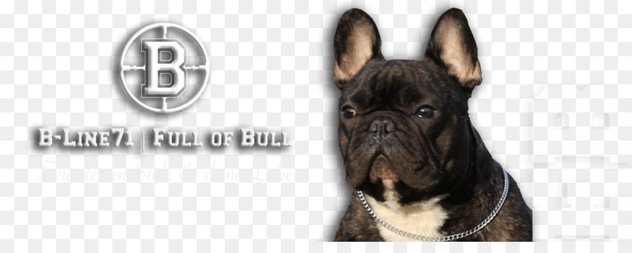 63+ French Bulldog Old English Bulldog