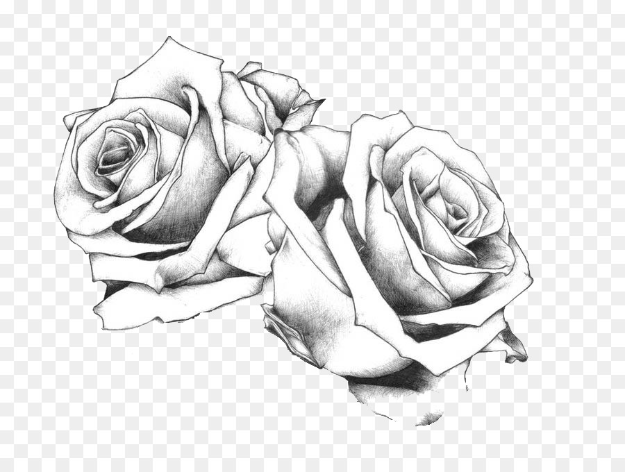 Line Drawing Of Rose Plant : Tattoo drawing art rose flash png download free