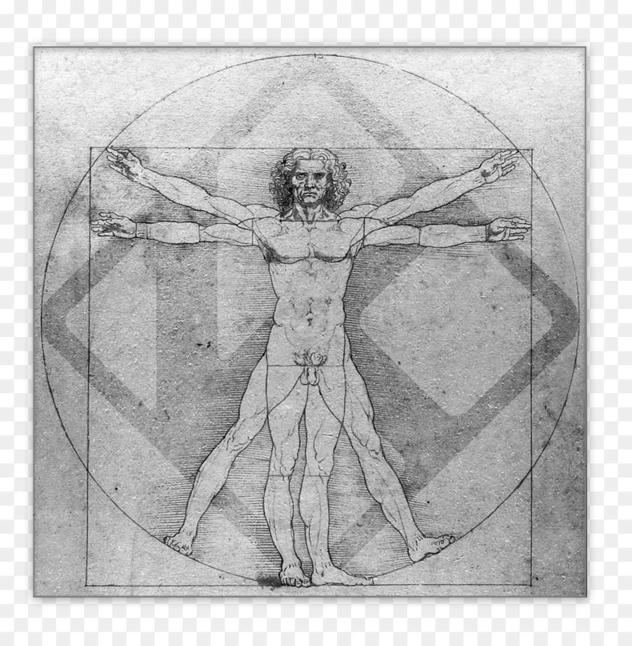Vitruvian Man Italian Renaissance Polymath Leonardo Da Vinci ...