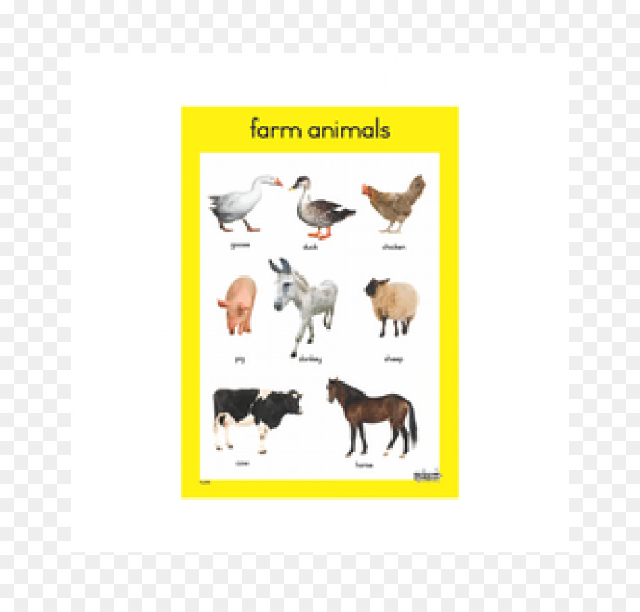 Pet Animal Farm Sparknotes Chart Others Png Download 700850