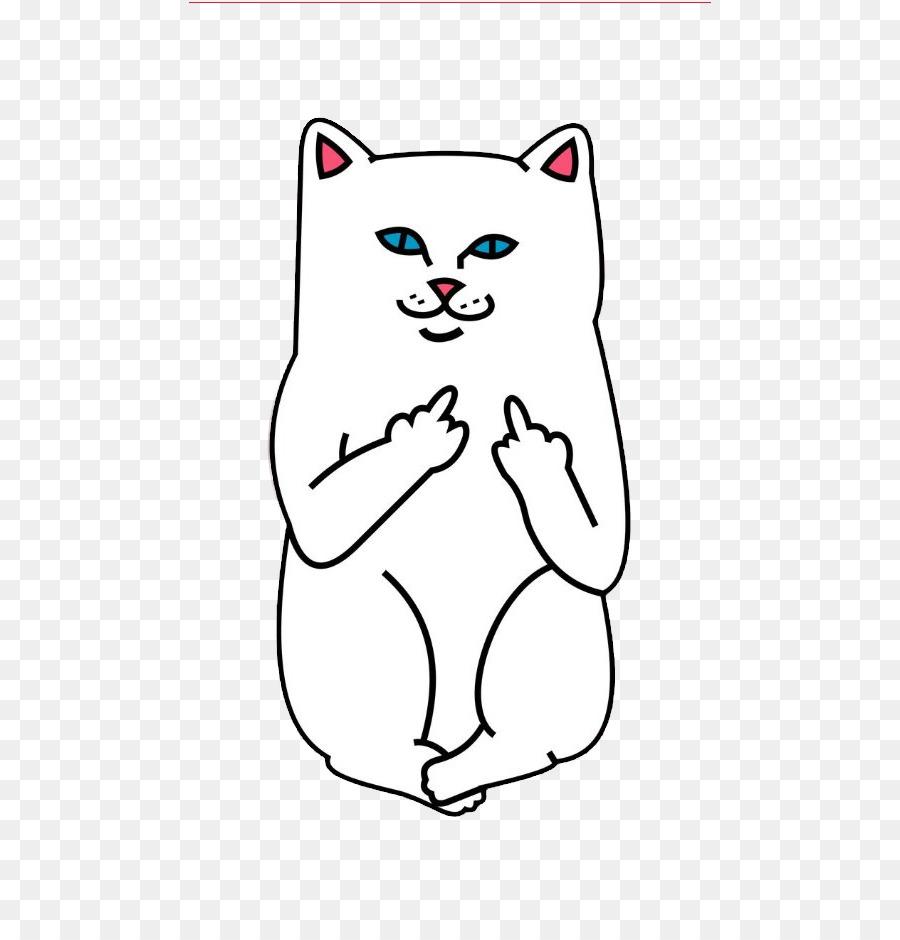 Apple Iphone 7 Plus Cat Wallpapers Desktop Wallpaper 0 Cat Png