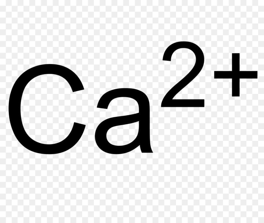 Ion Calcium Carbonate Chemical Compound Calcium Hypochlorite Salt