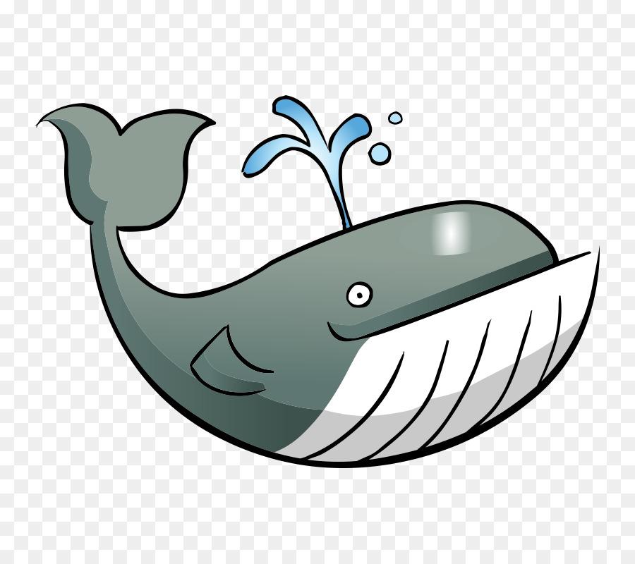 Aquatische Tier-Fisch-clipart - Fisch png herunterladen - 800*800 ...