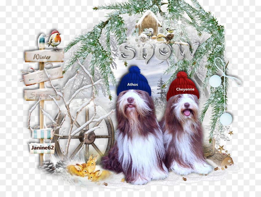 Cão Da Raça Shih Tzu De Natal Enfeite De árvore De Natal