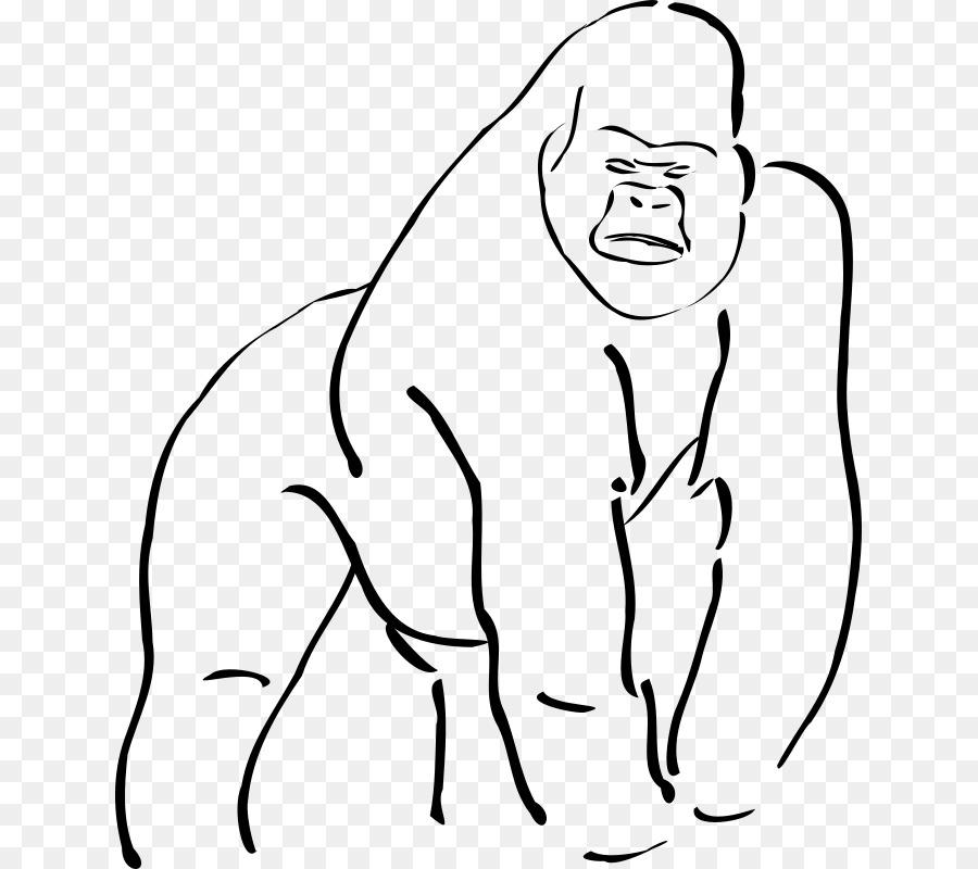 Gorila de montaña Ape Dibujo Clip art - gorila png dibujo ...