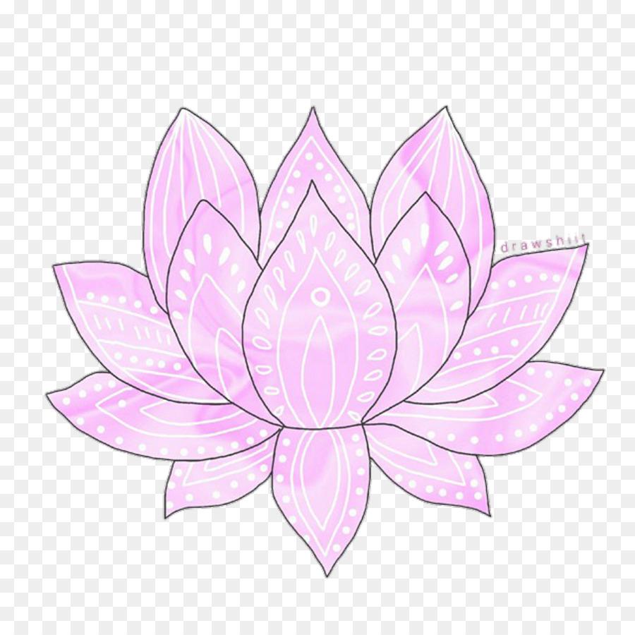 Petal Flower Transparency And Translucency Drawing Lotus Flower