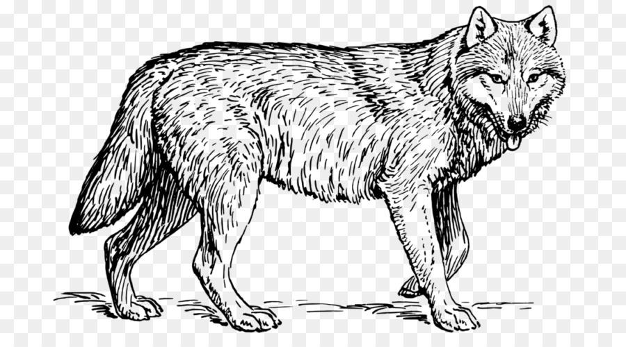 Libro para colorear Paquete de Cachorro de Perro Adulto - cachorro ...