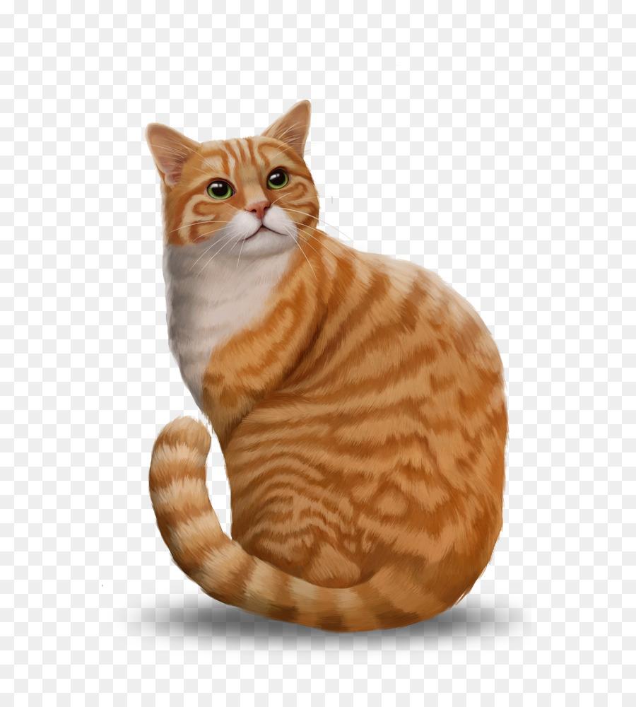 Tabby Cat American Shorthair Toyger Ocicat Bengal Cat Kitten Png