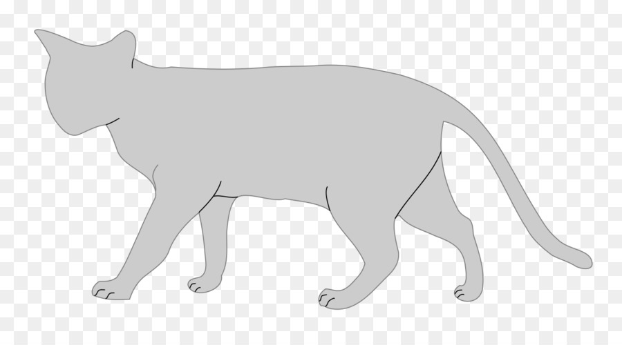 Gato persa Gato anatomía Felidae Clip art - gato persa png dibujo ...