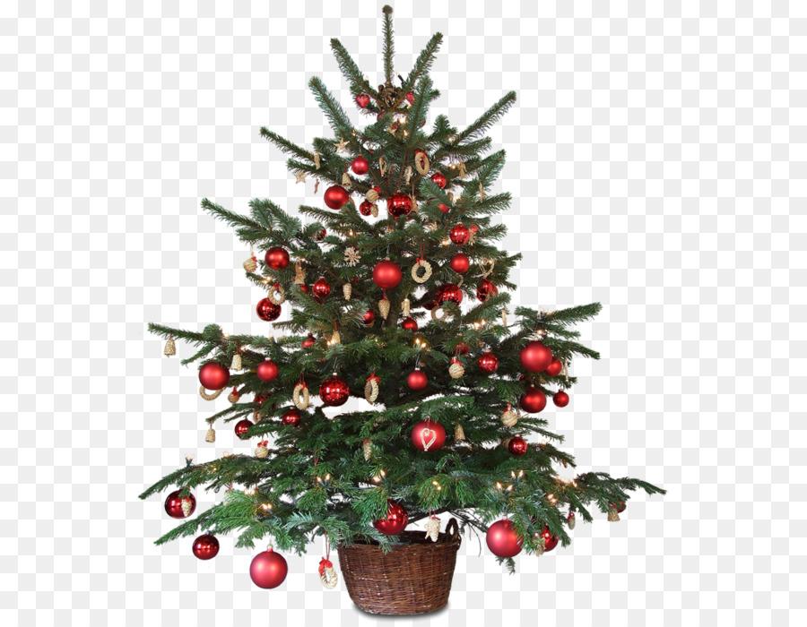 Christmas Decoration Animated Film Christmas Tree Christmas Png