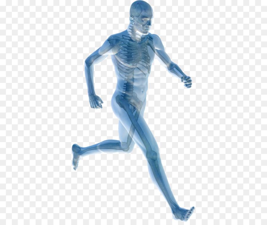 Cuerpo humano, dolor en las Articulaciones Dolor de administración ...