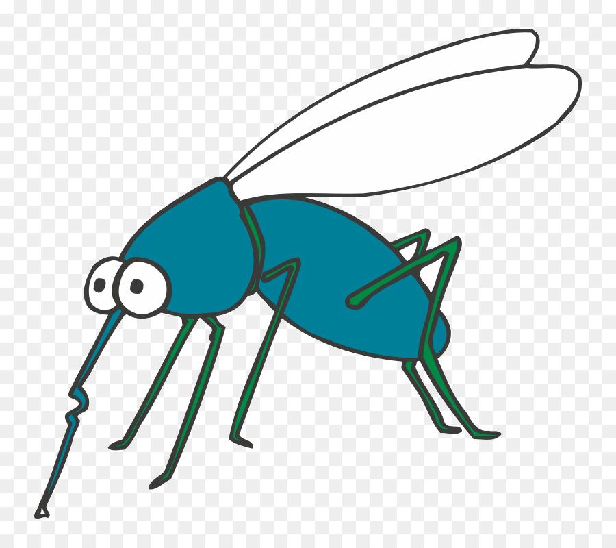 Mosquito libro para Colorear de Mariposas Ant - mosquito Formatos De ...