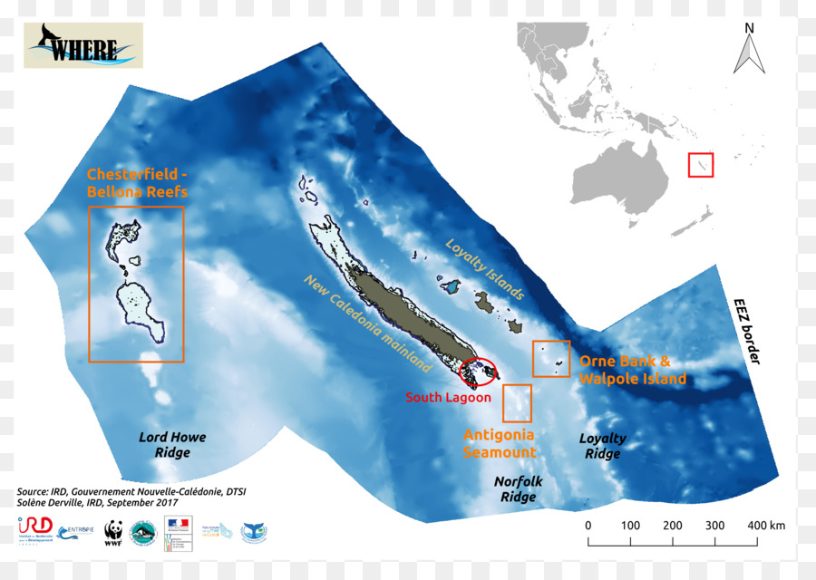 Coral Sea Geography of New Caledonia Map Marine mammal - map png ...