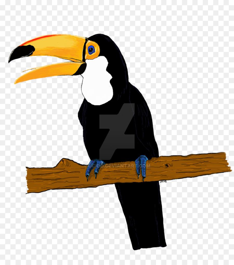 El Tucán De Aves Dibujo, Arte - Aves Formatos De Archivo De Imagen ...
