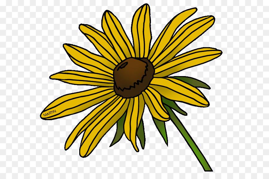 blackeyed susan maryland state flower clip art flower png download