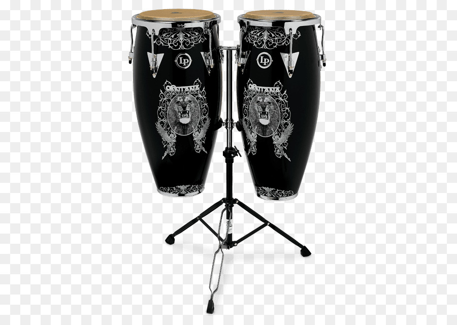 Latin Percussion Instruments -