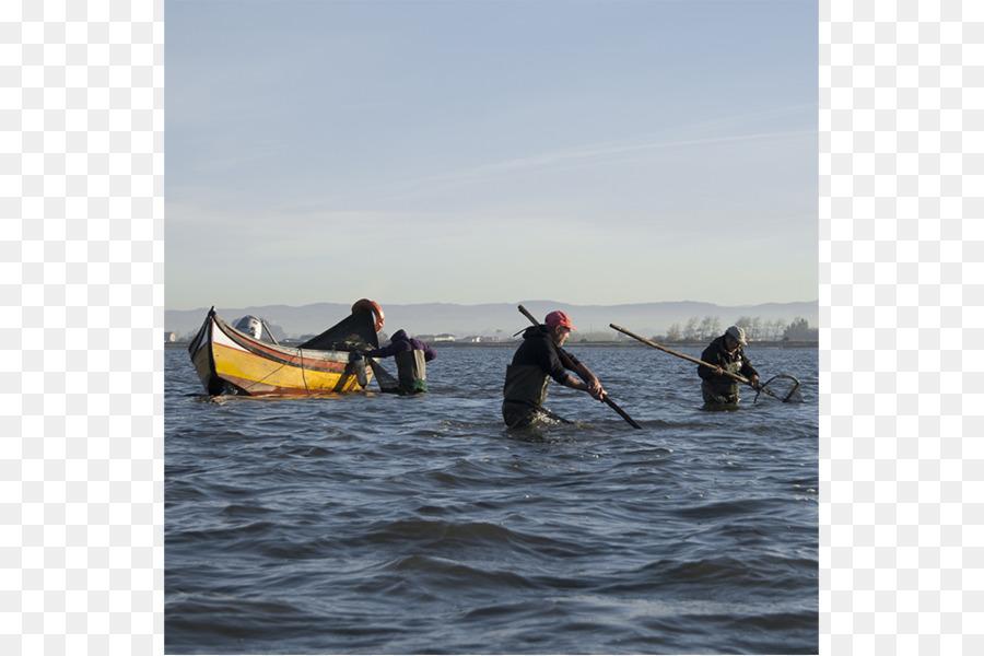 paddle png download - 1024*682 - Free Transparent Sea Kayak