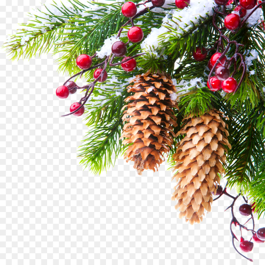 january kiev 0 new year holiday creative christmas tree branches - Christmas Tree Branch Decorations