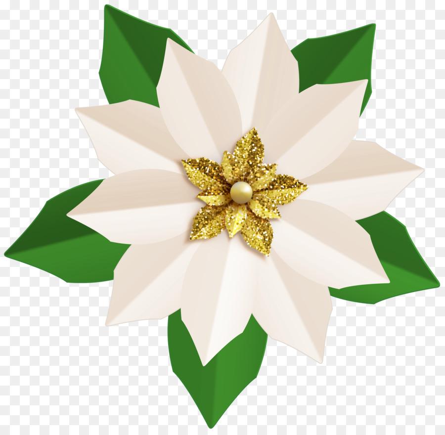 Weihnachtsstern Blume clipart - Weihnachtsstern clipart png ...