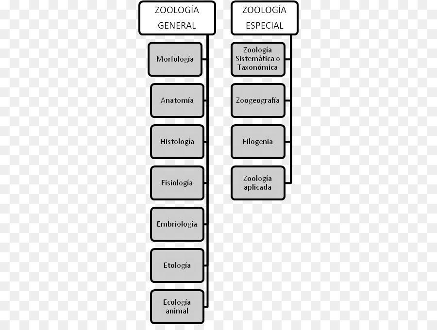 Zoology Anatomy Physiology Ethology Histology - tree branches png ...