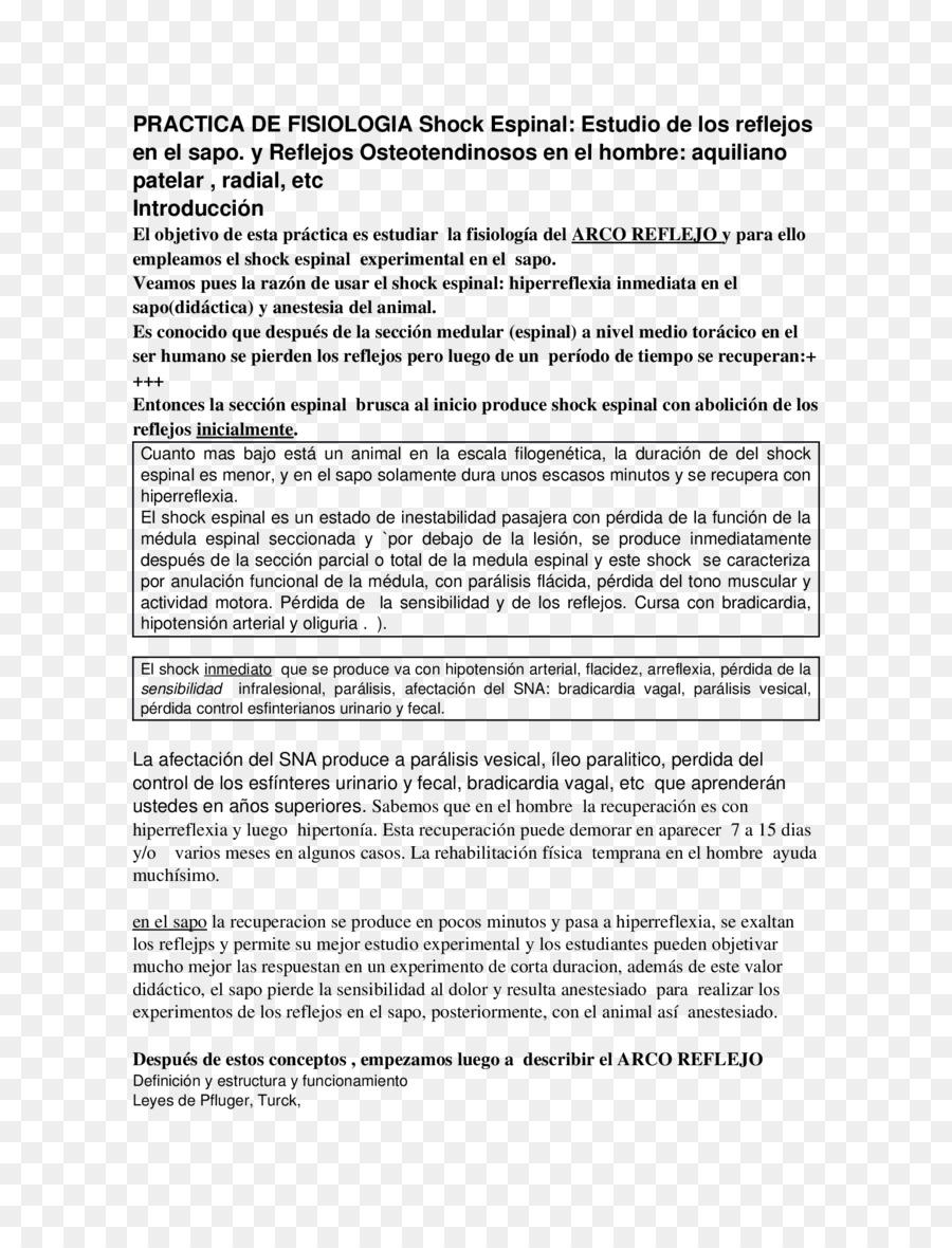 Curriculum vitae Documento \