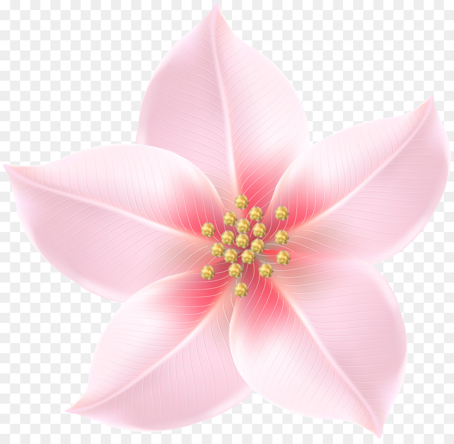 Pink m pink and gold flowers png download 50004863 free pink m pink and gold flowers mightylinksfo