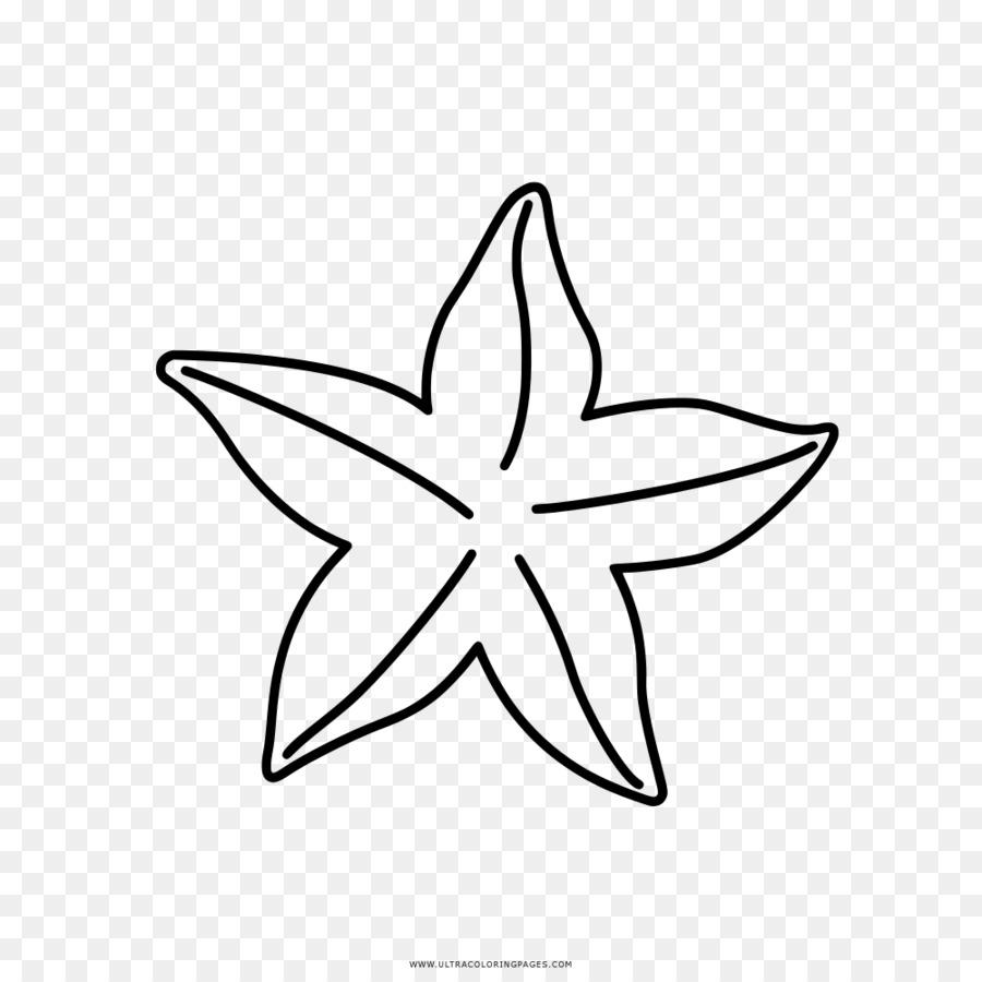 Buku Mewarnai Gambar Bintang Laut Clip Art Estrela Do Mar Unduh