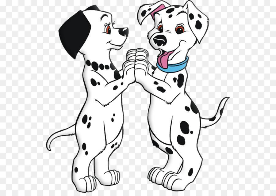 Dalmaçyalı Köpek Yavrusu Rolly 101 Dalmaçyalı Youtube Köpek