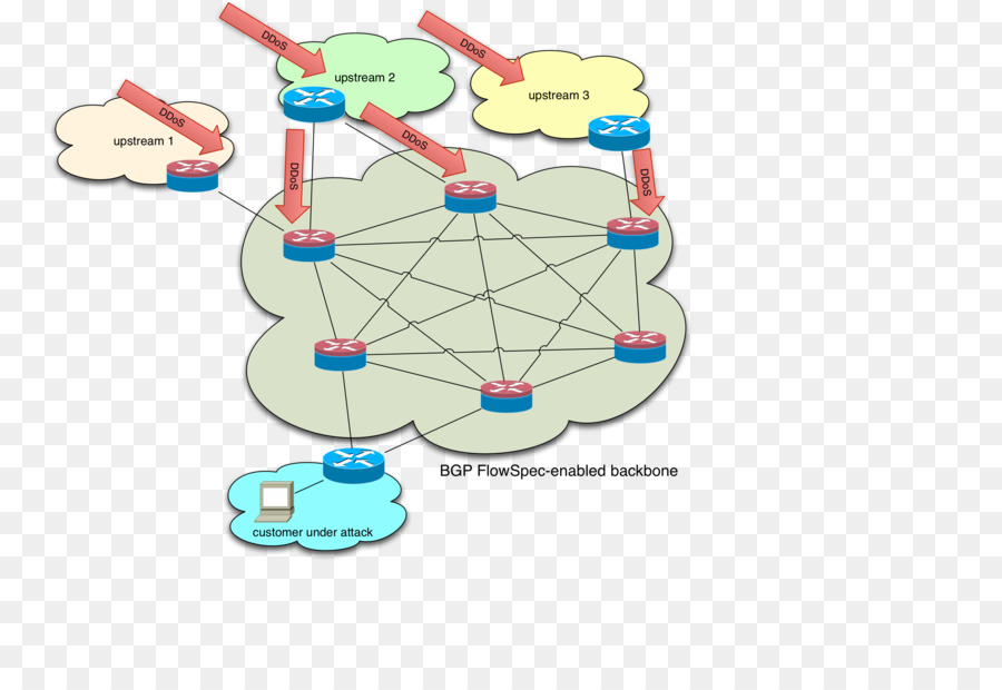 Network Layer Reachability Inf...