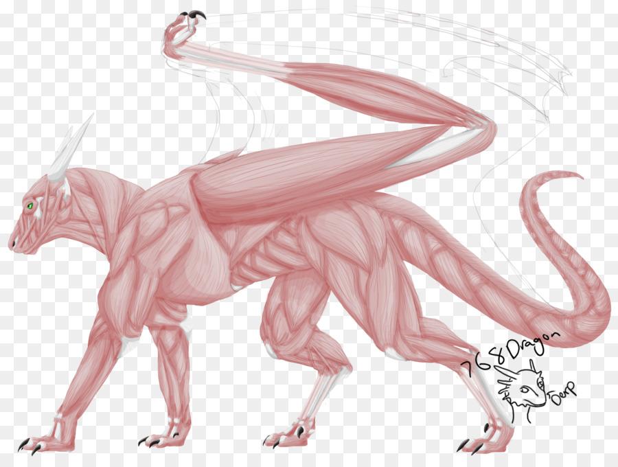 Dragon The Elder Scrolls V: Skyrim Mammal Reptile - Anatomy Muscle ...