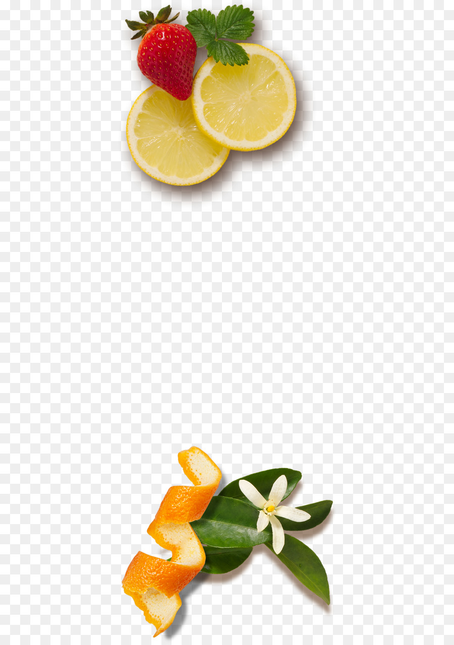Lemon Fruit Orange Juice Florida Fresh Salad Png Download 434