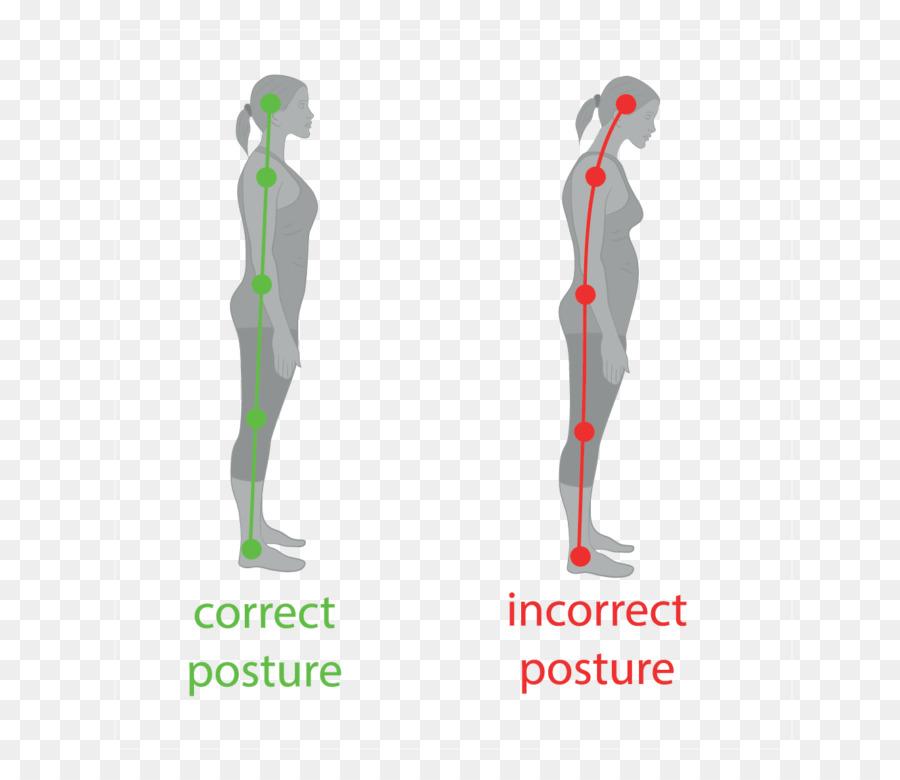 Neutral de la columna Baja postura de Pie cuerpo Humano de la ...