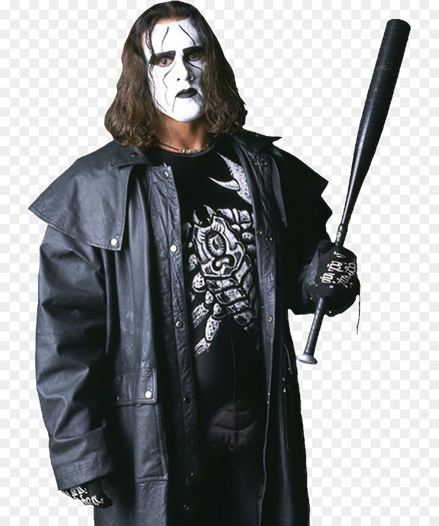 sting impact professional wrestling professional wrestler world championship wrestling the crow