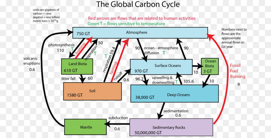 Carbon cycle geosphere diagram process others png download 744 carbon cycle geosphere diagram process others ccuart Choice Image